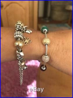 Pandora Essence Bracelet With All Charms