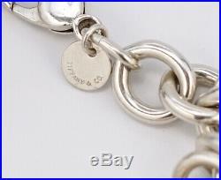 TIFFANY&Co Multi Gemstone Charm Bracelet Silver 925 Bangle withBOX v1959
